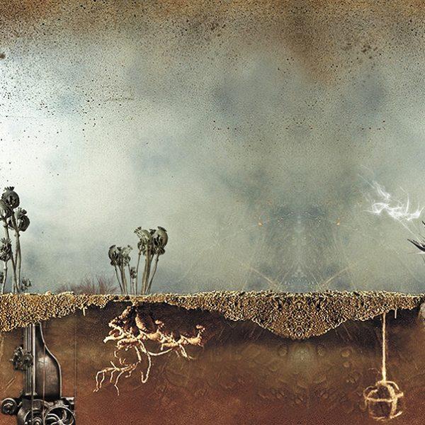 Adaptive landscape